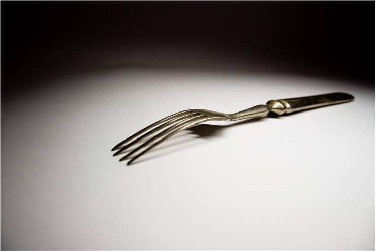 Fork Picture